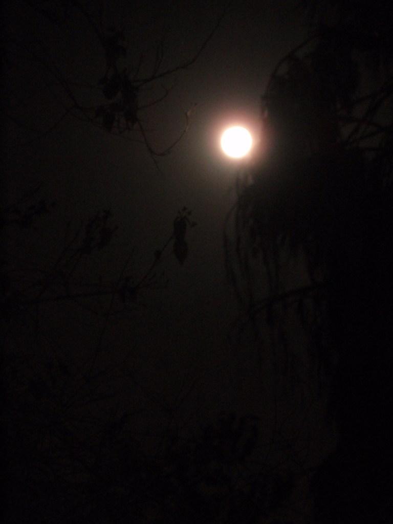 eclipse-061