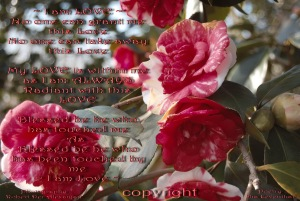 i am love poem copyright