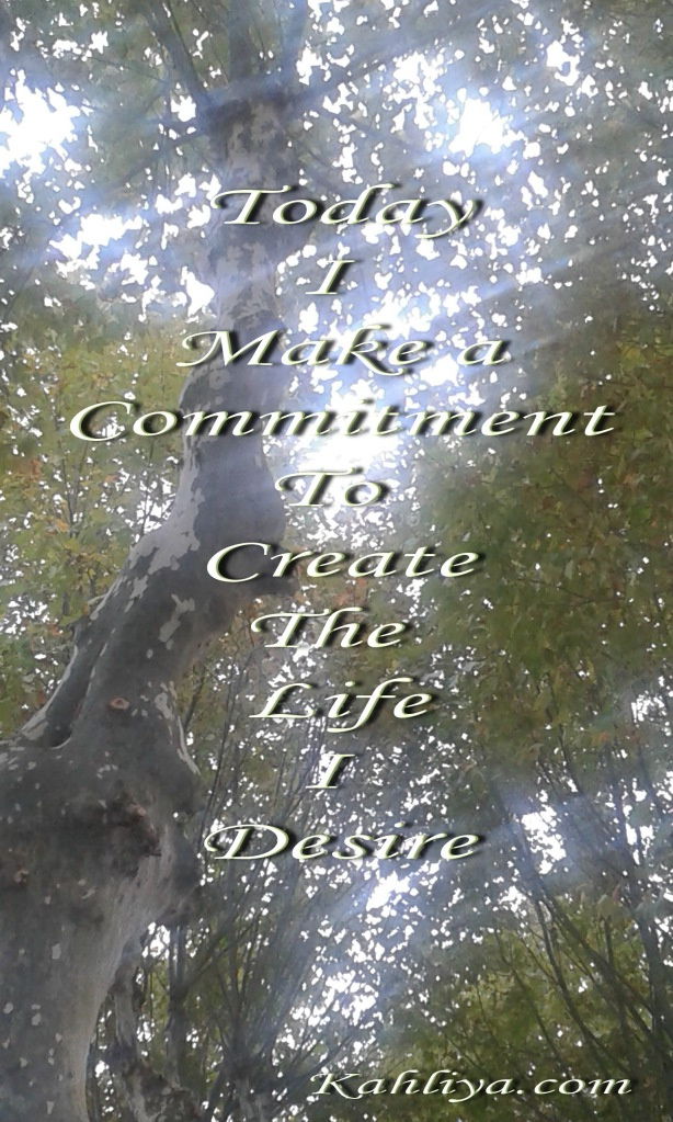 20151020_165855 commitment signed