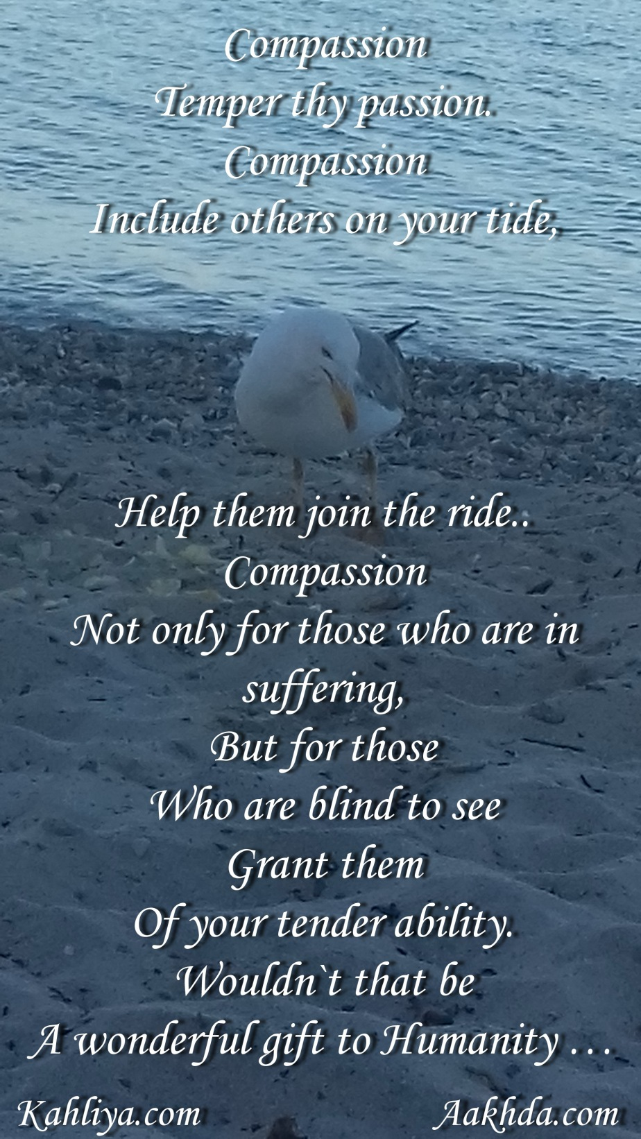 compassion dbl signd